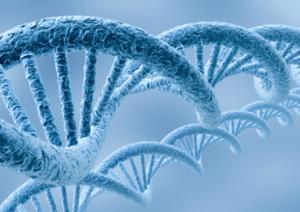 animal-biotechnology